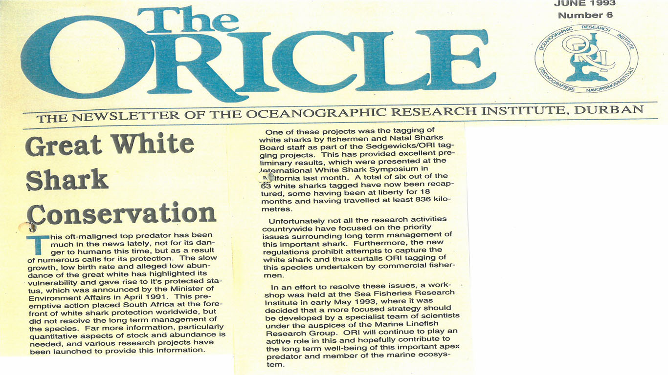 Since inception (in 1951) ORI has conducted scientific research on sharks. This week's Chronicles of The Oricle instalment from June 1993, features the initiatives by ORI and other research groups to focus on great white shark conservation. As apex predators, sharks play a critical role in marine ecosystems.